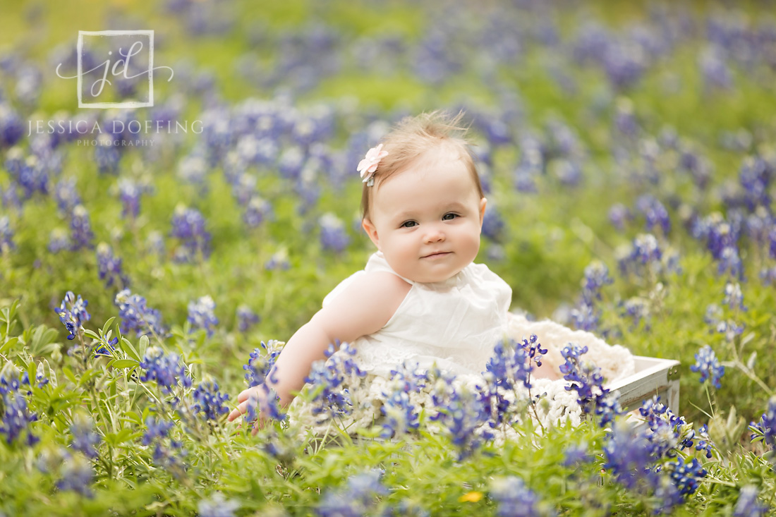 baby girl bluebonnets