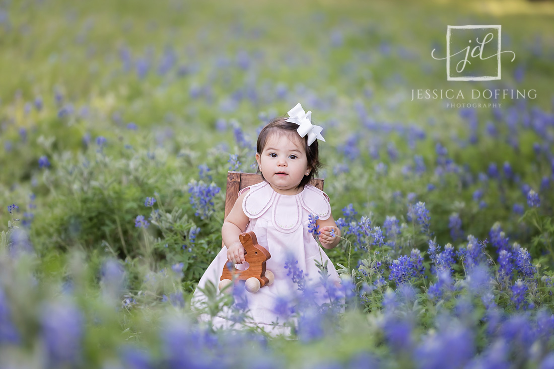 baby girl austin texas bluebonnets