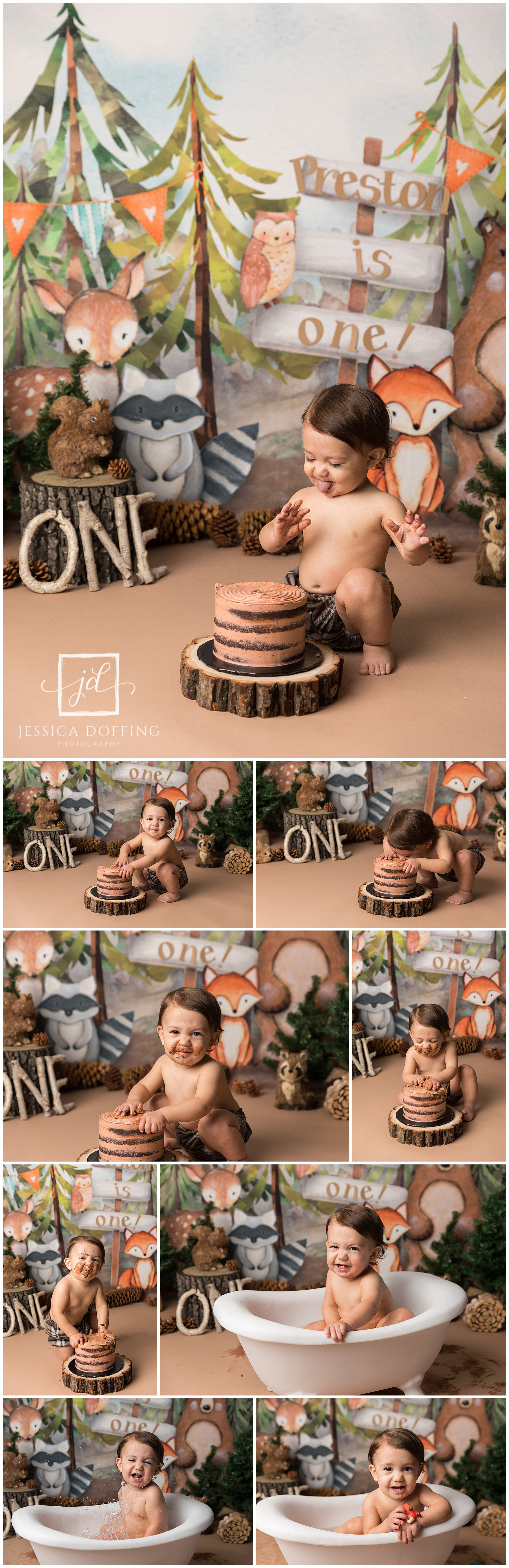 woodland creatures cake smash