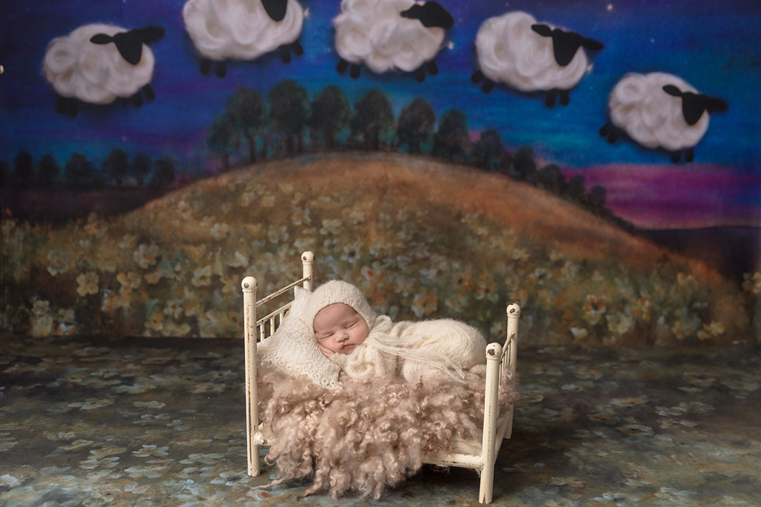 newborn in bed prop with sheep background