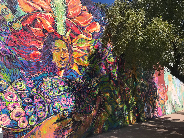 Tucson 2019 (88 of 94).jpg
