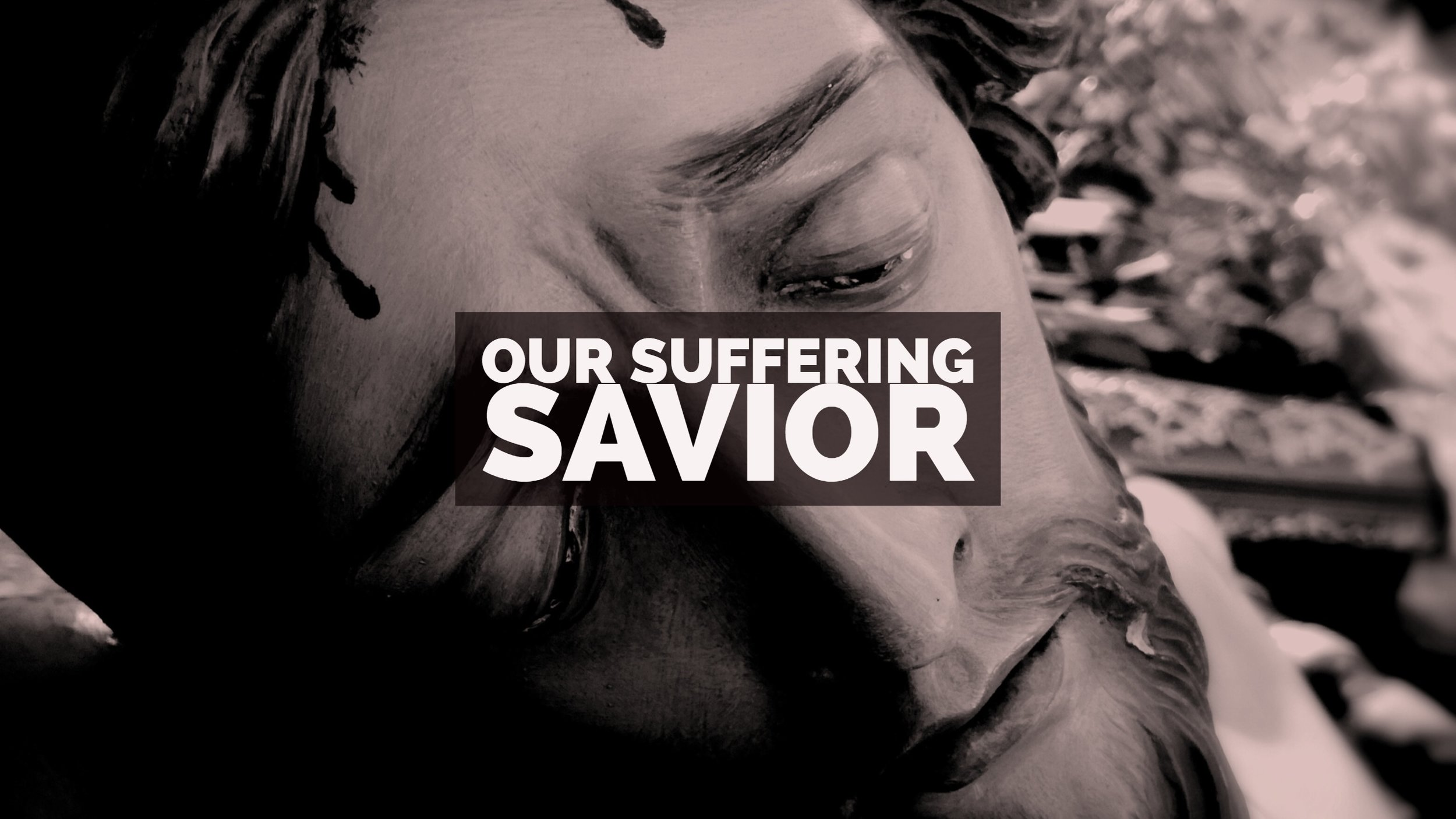 Our Suffering Savior Title Graphic.jpg