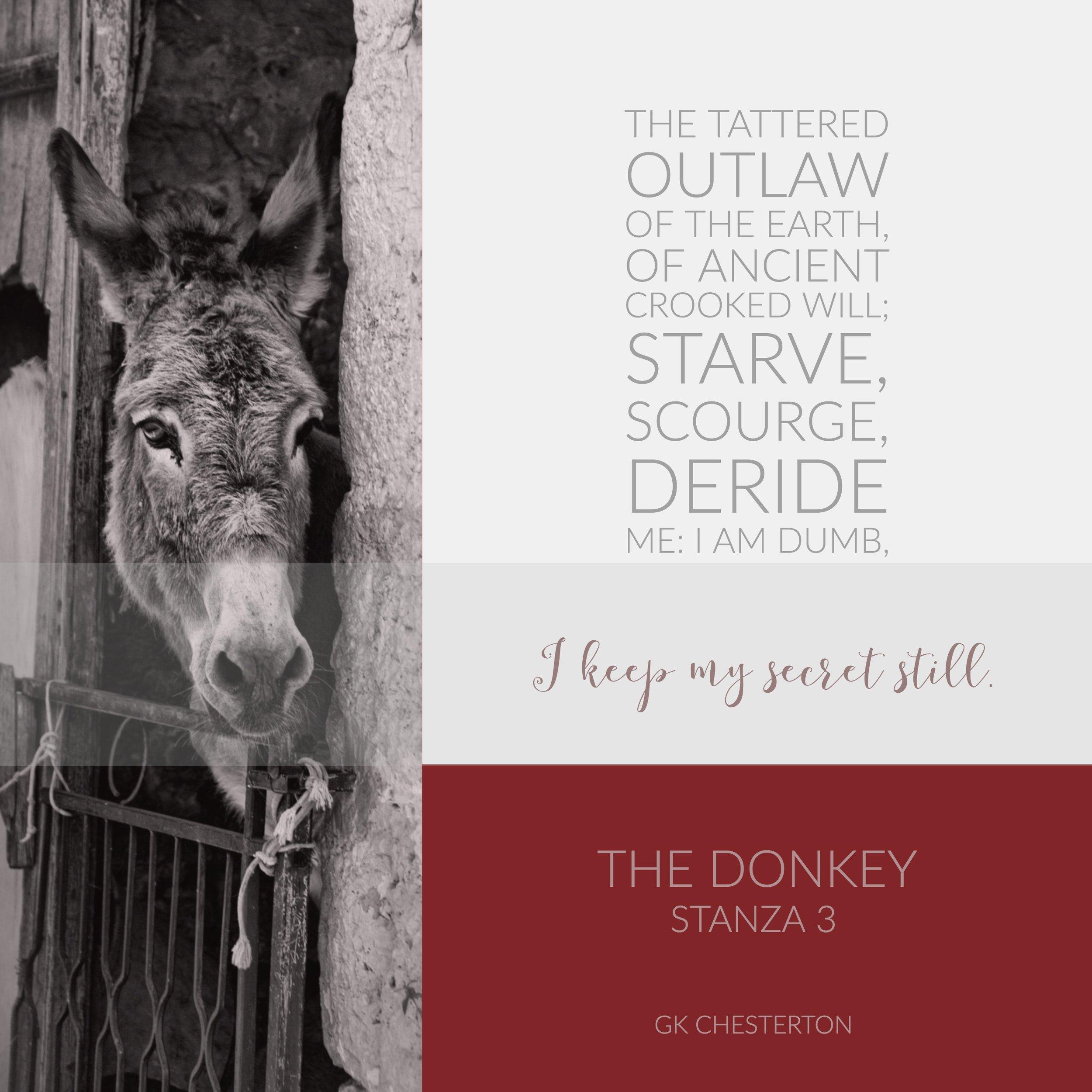 The Donkey 3.jpg