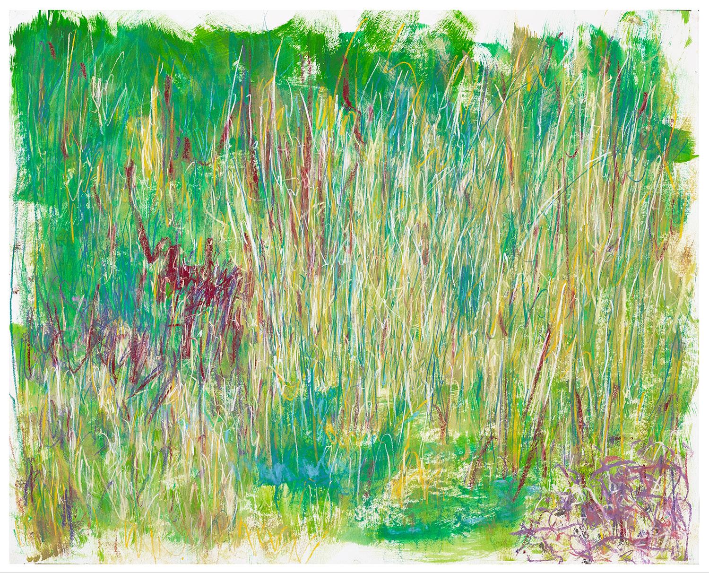 MCCORMICK GRASSES