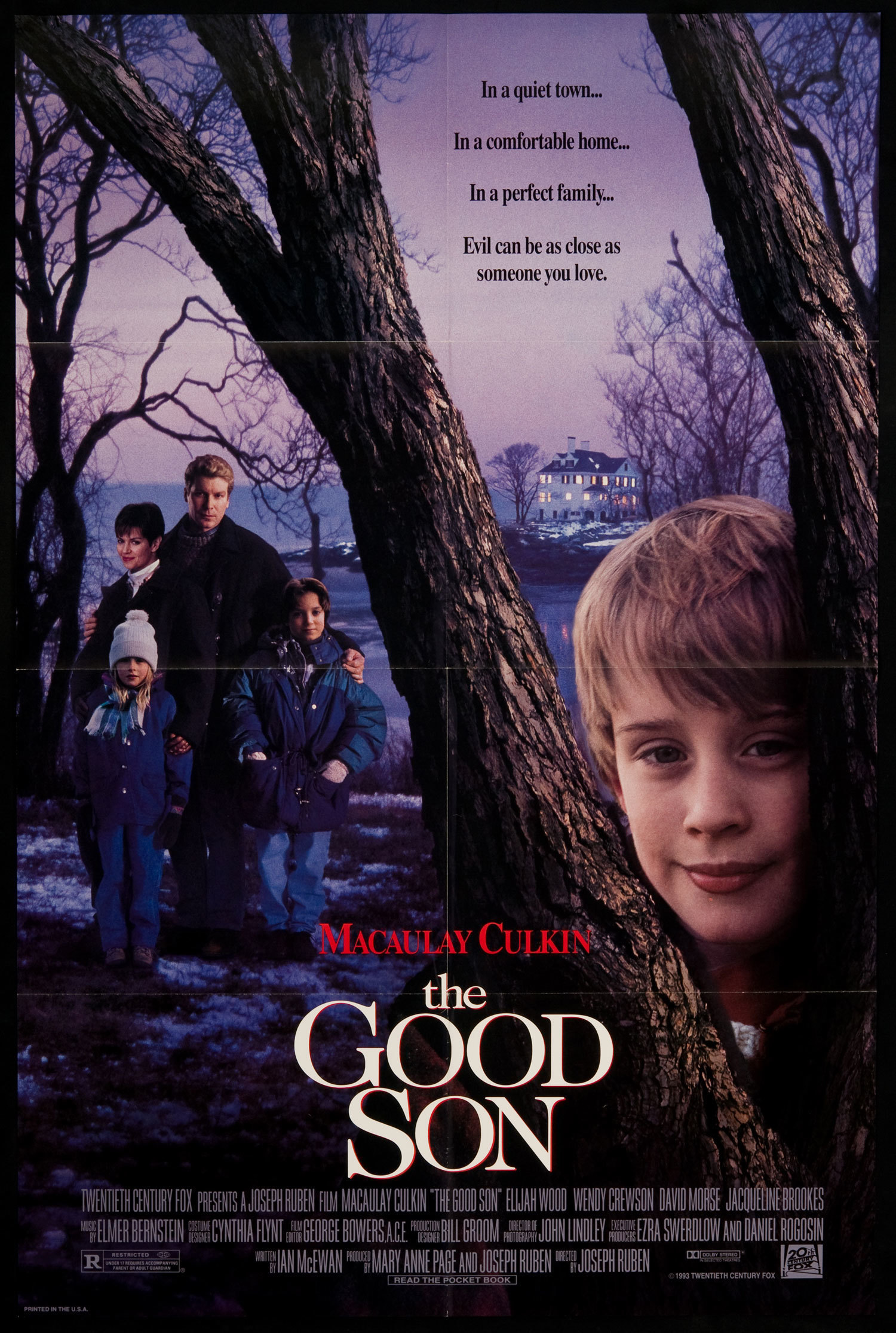 The_Good_Son_movie_poster.jpg