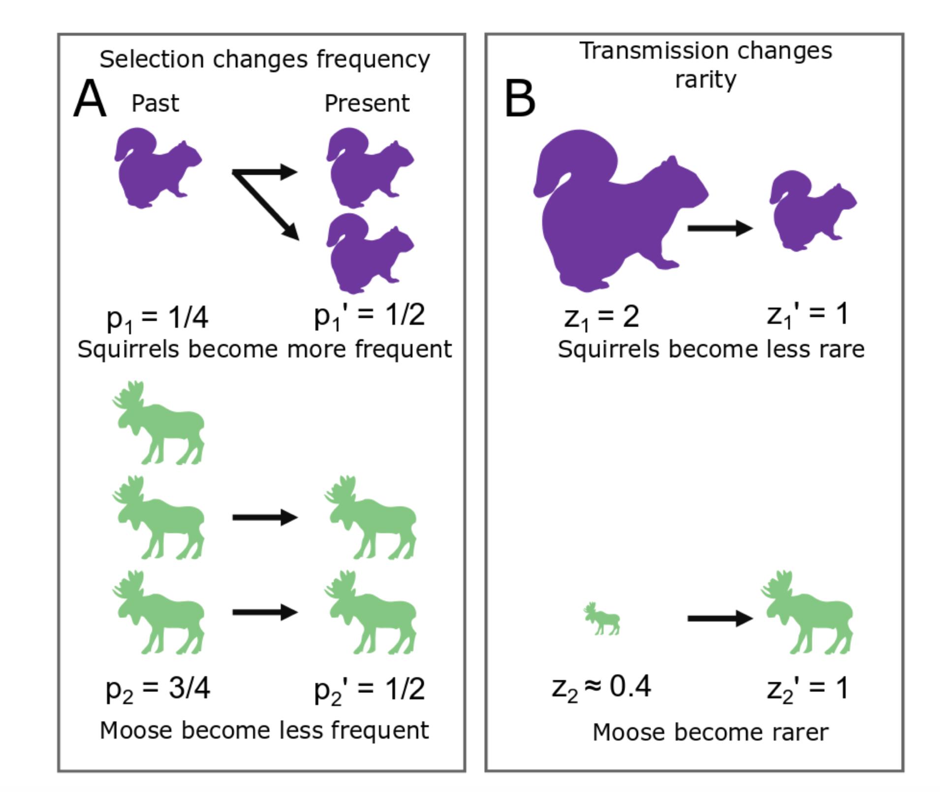 A portion of Figure 1 in Godsoe et al. 2019