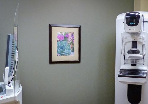 art+dallas_womens+clinic_after_1000x-1020537.jpg