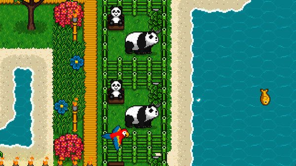 The-Islander-Pandas.jpg
