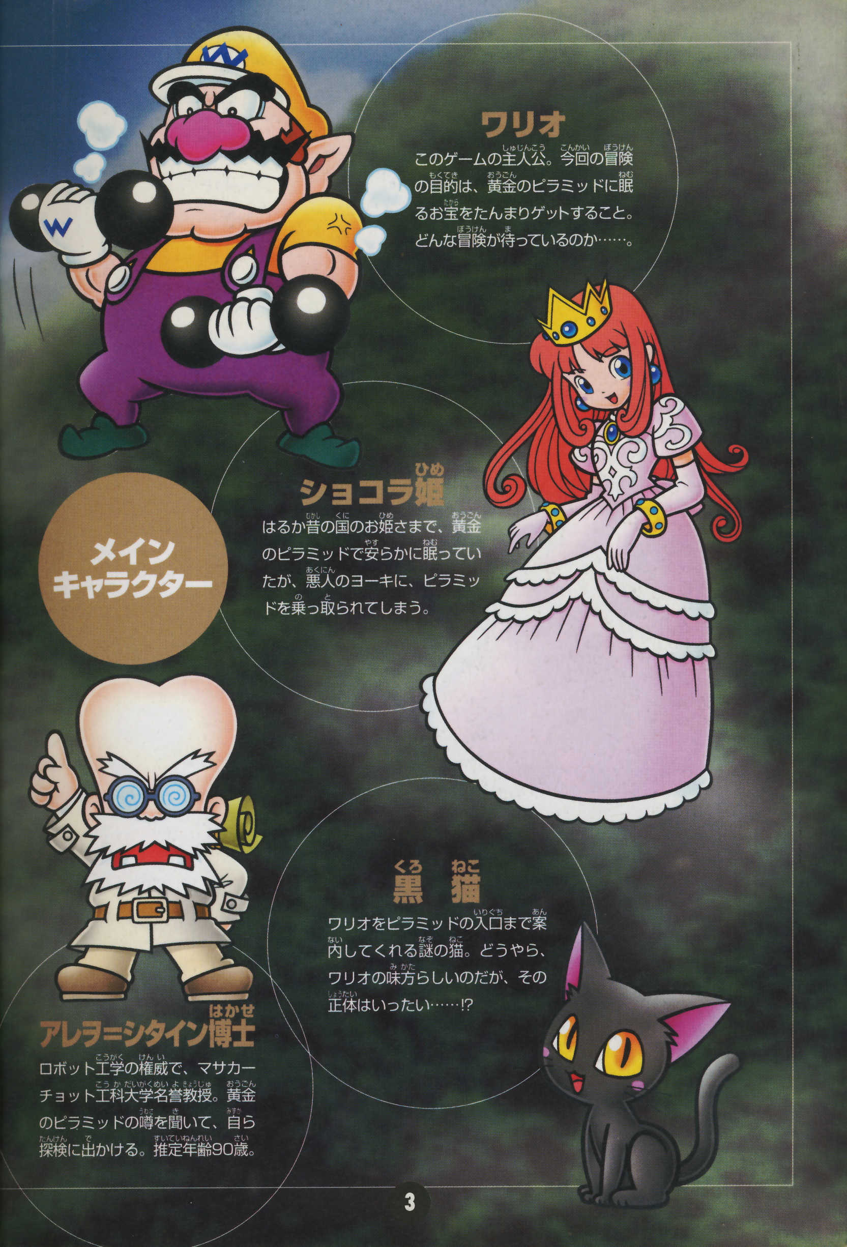 wario land 4 supporting cast