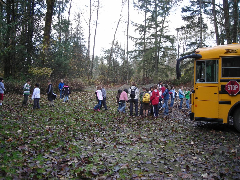 bus arriving (Large).JPG