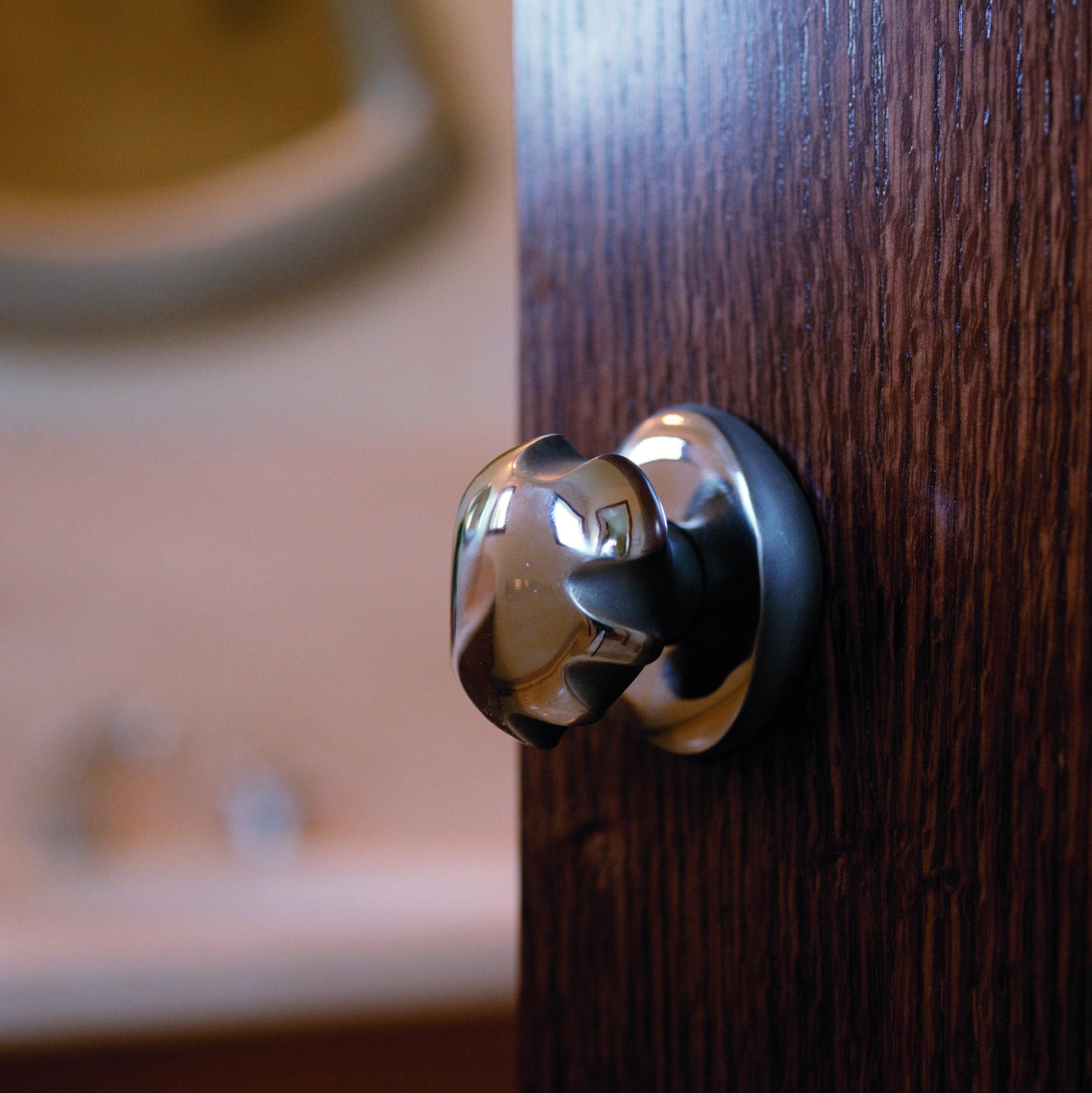 steel-door-knob-contemporary.jpg