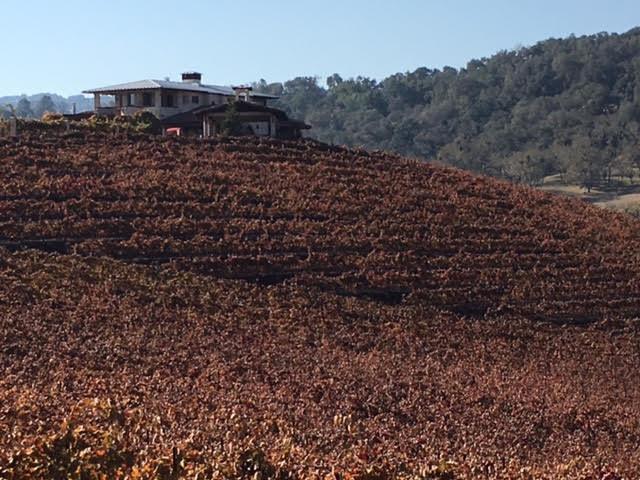 Hammersky Vineyards photo by Martin Pierce Hardware Los Angeles CA 90016