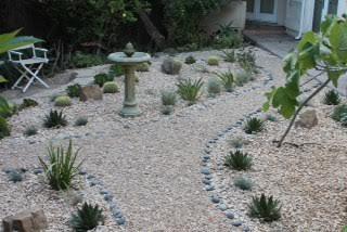 Drought resistant garden photo by Martin Pierce Hardware Los Angeles CA