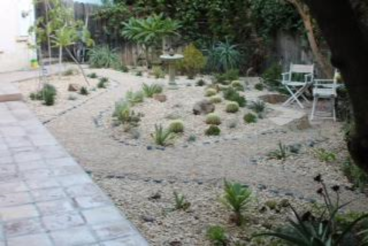 Drought resistant garden Photo by Martin Pierce Hardware Los Angeles CA  90016