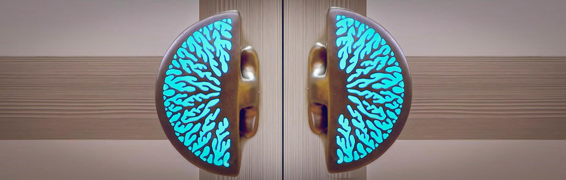 ILLUMINATED CORAL DOOR HANDLES  Uniquely crafted LED lit door handles   Coral Door Handles