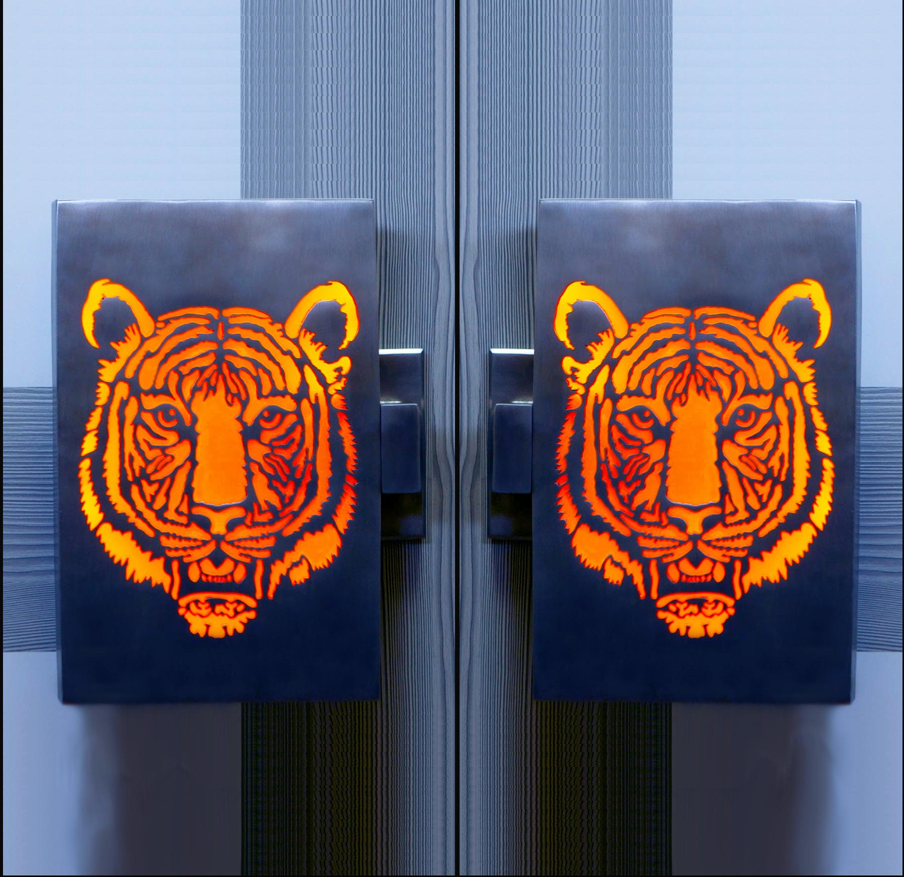 Illuminated Door Handles