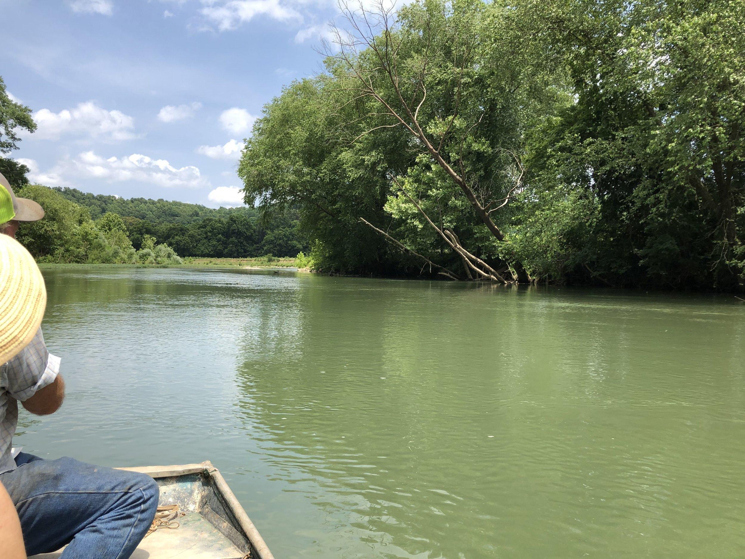Floating the Buffalo River