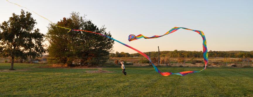 kite flying.jpg