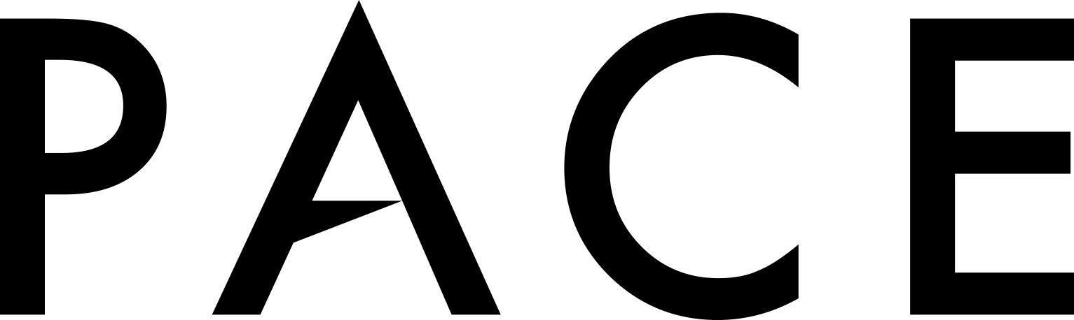 PACE_logo_v2.png