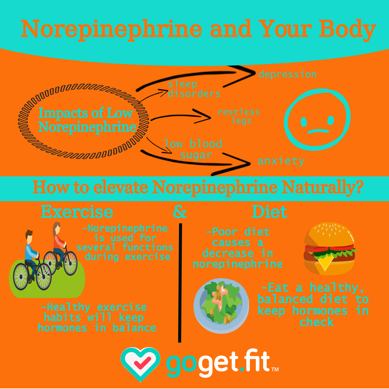 Norepinephrine and Exercise (2).png