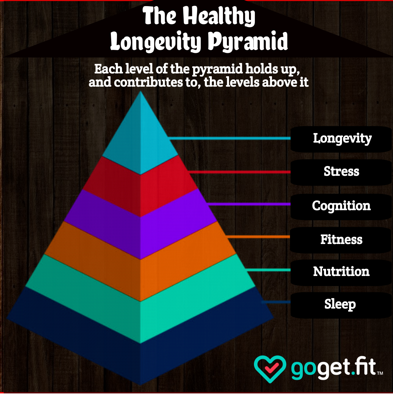 Health Pyramid (1).png