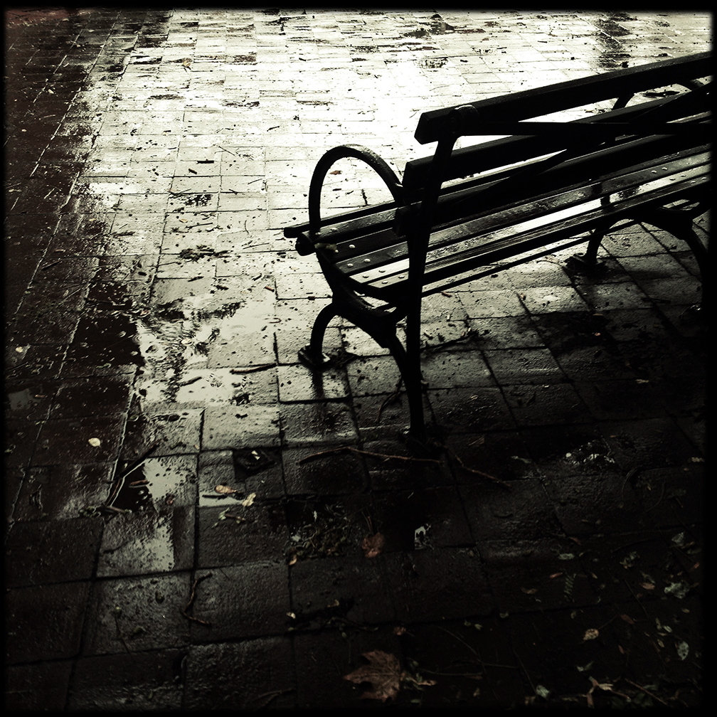 Bench in the rain
