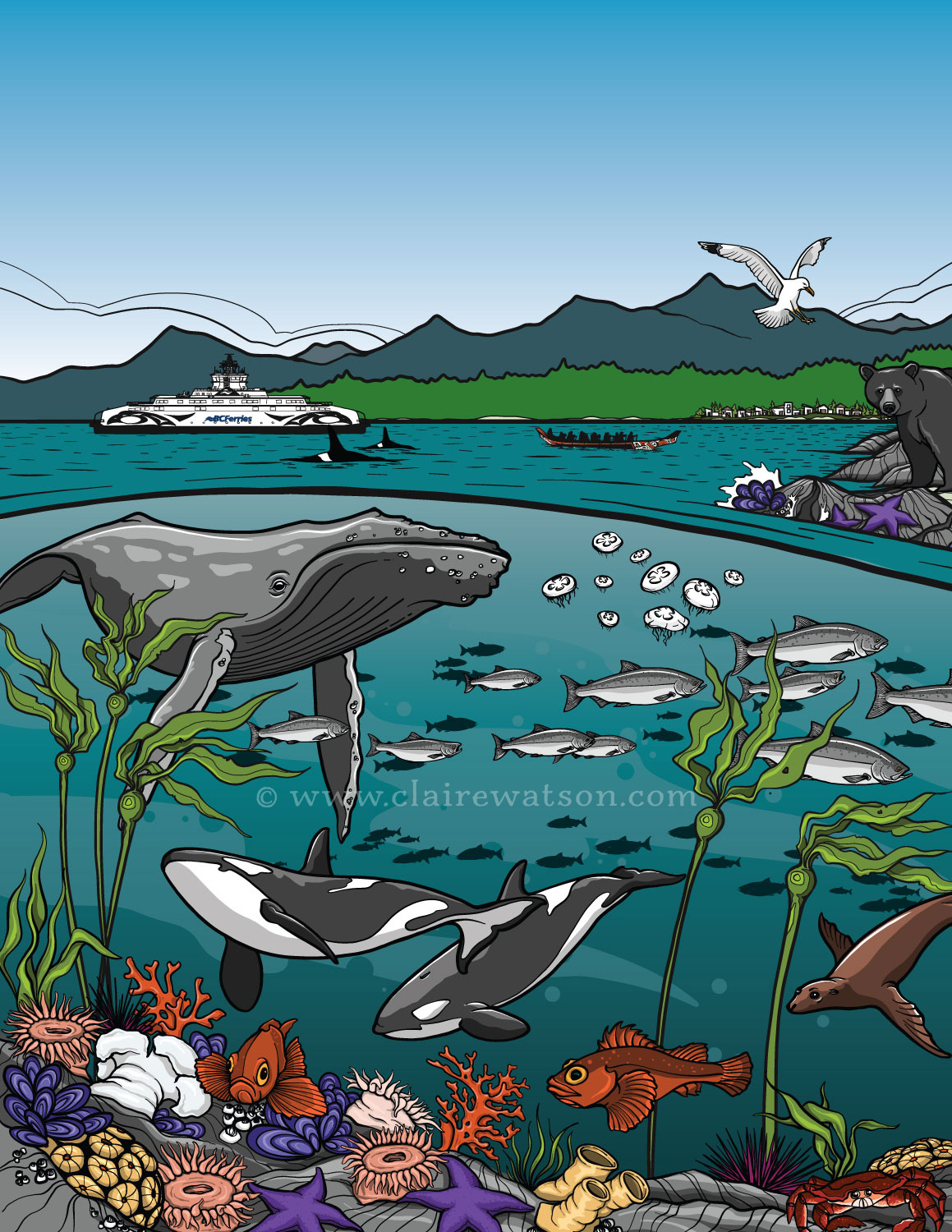 BC Ferries - Sea Forward Activity Book - Cover