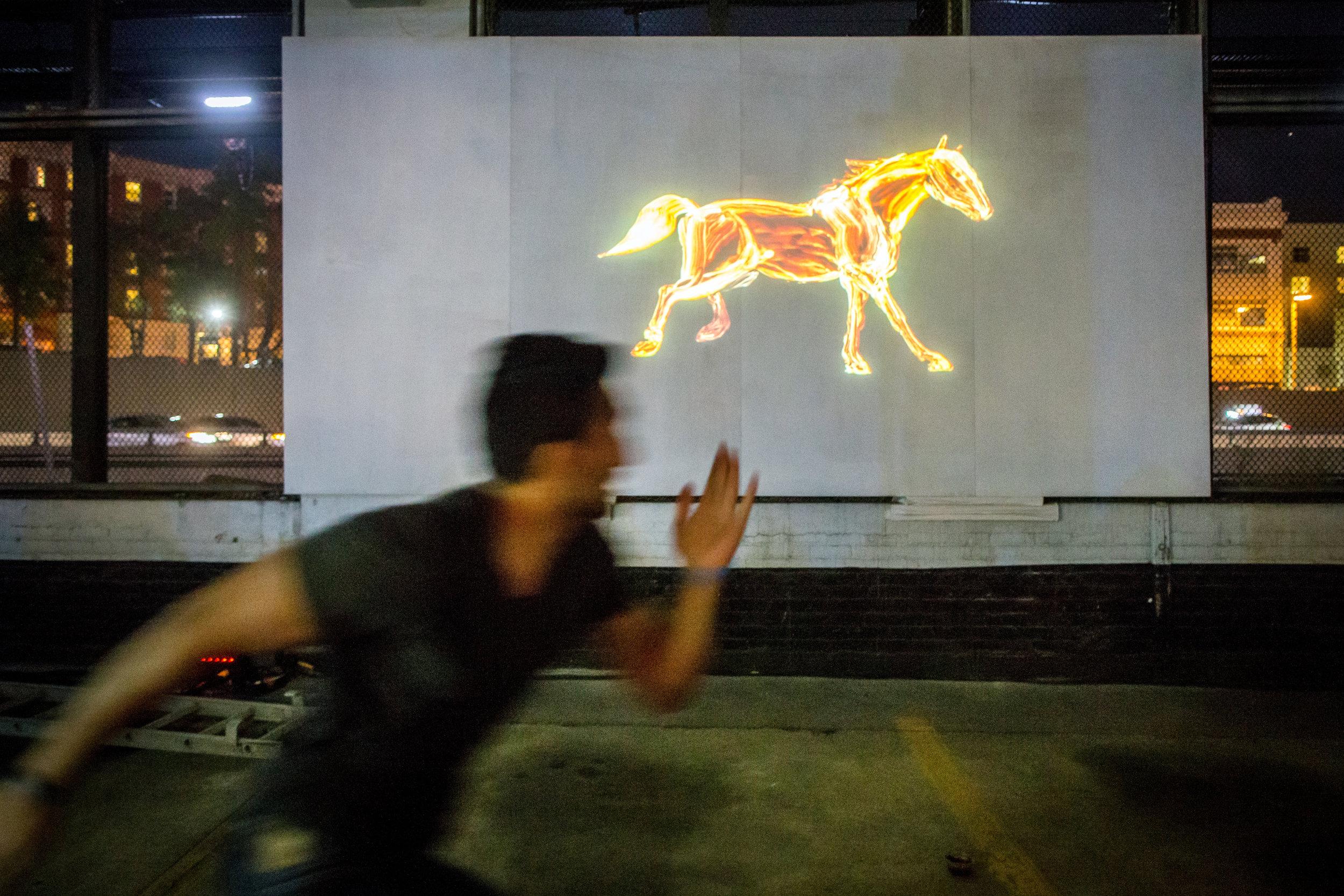 Gallop_Claire Eder_Illuminus 2015_Photo by Aram Boghosian_1.jpg