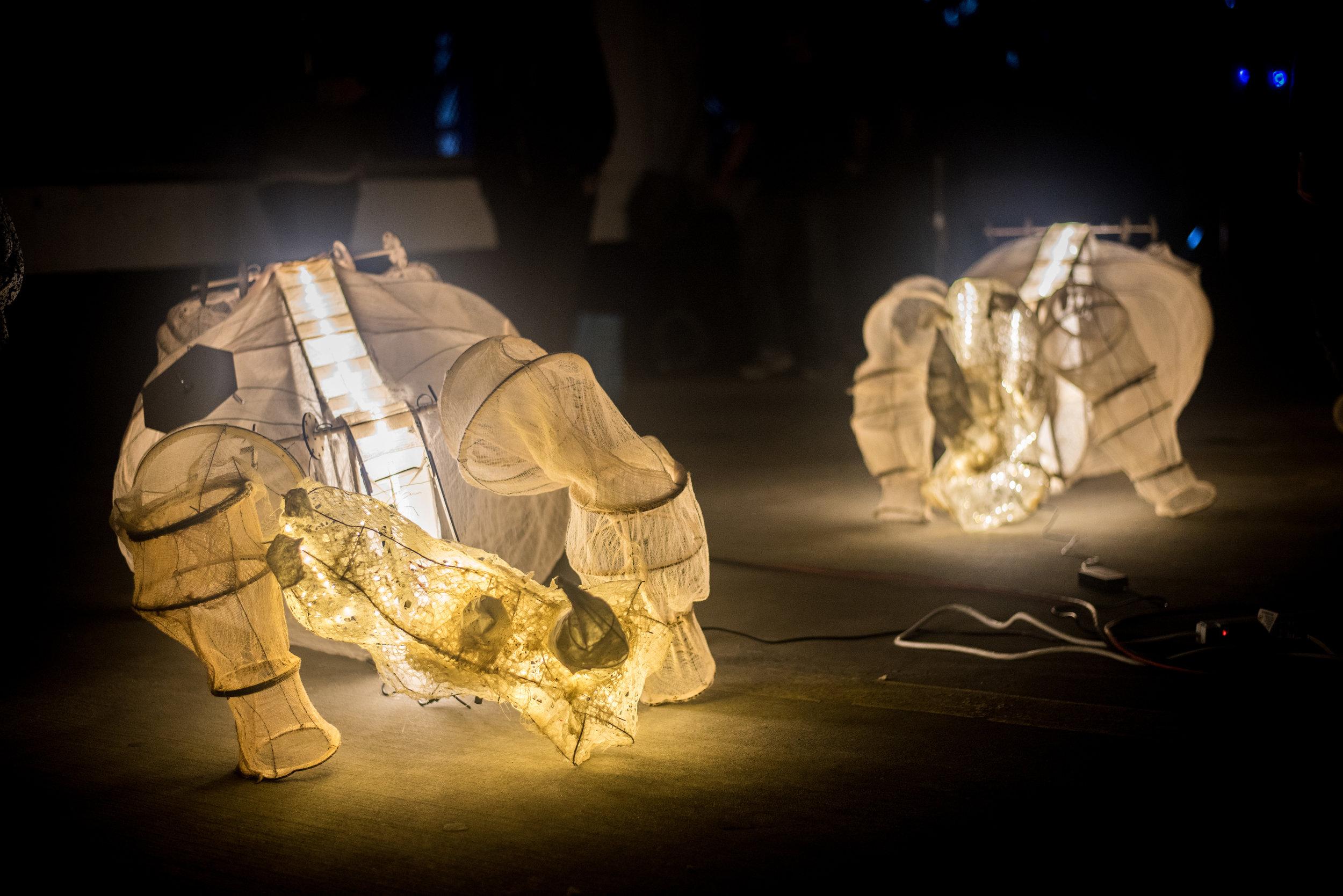 Requiem for Rhinoceros- Nabire's Dream_David Nunez_Illuminus 2015_Photo by Tina Tian_1.jpg