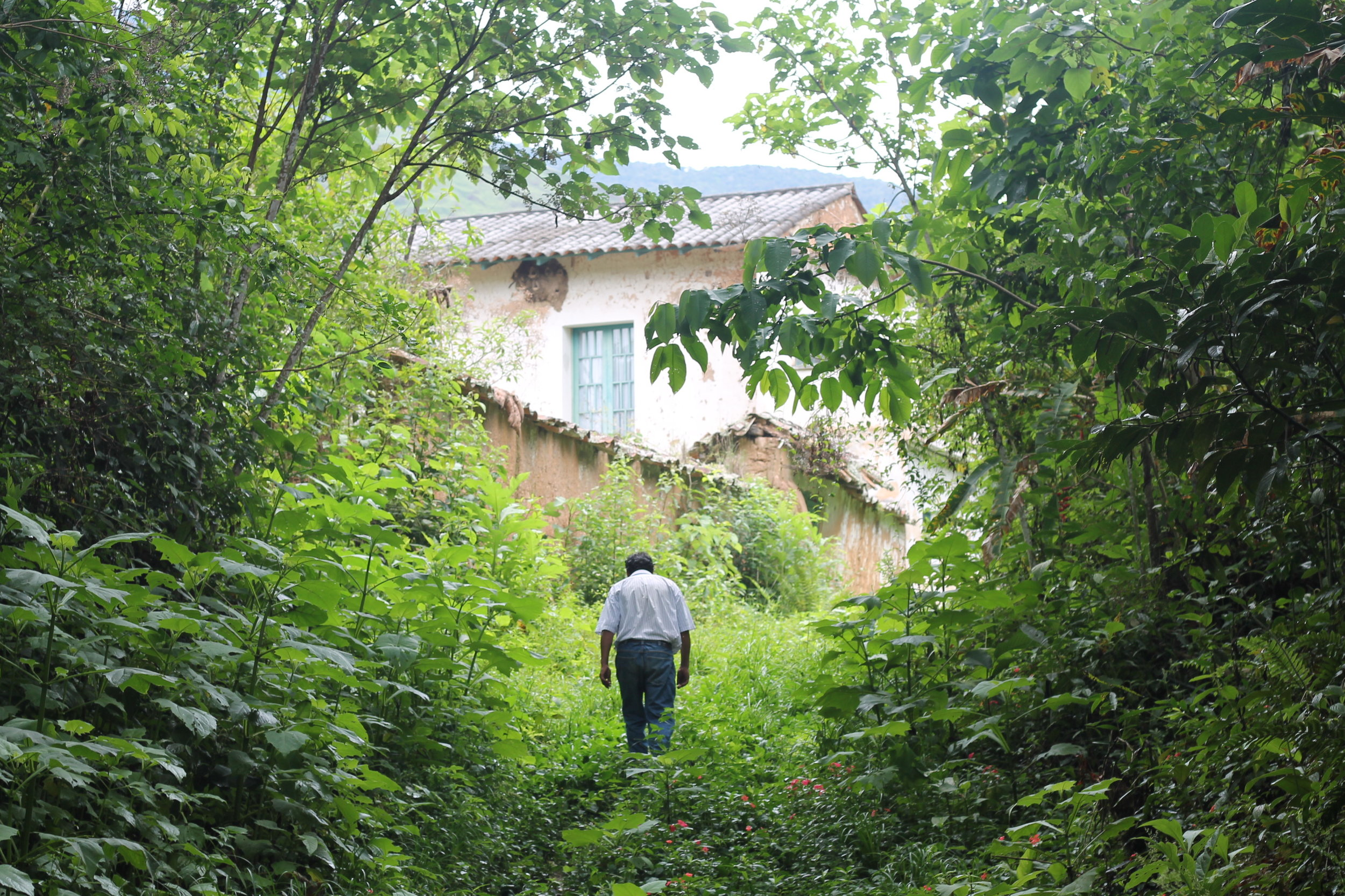A local walks past the old hacienda at Mururata.JPG