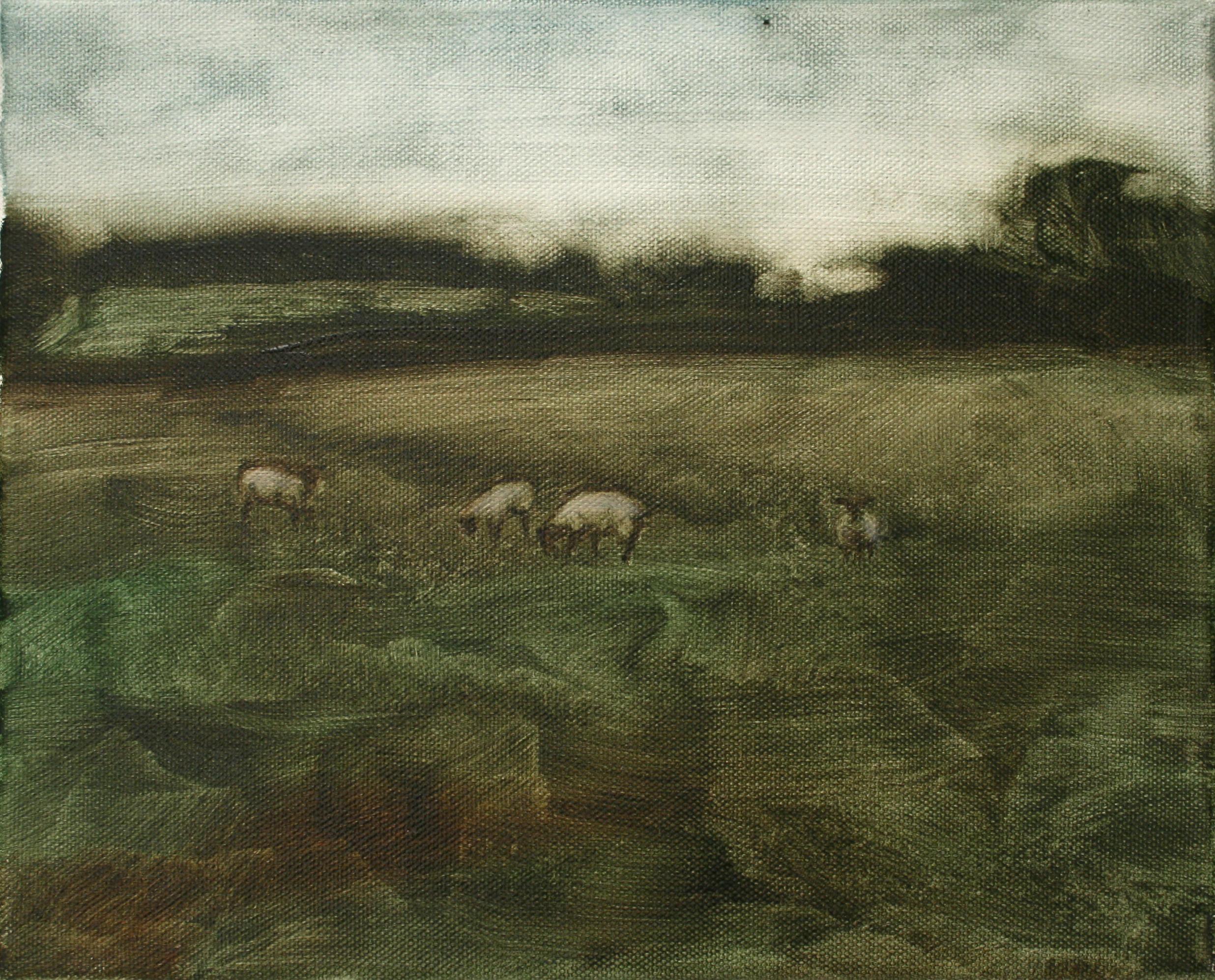 "Sheep Study 3, oil on canvas 30 x 24.5 cm (12"" x 9.5""), 2016"
