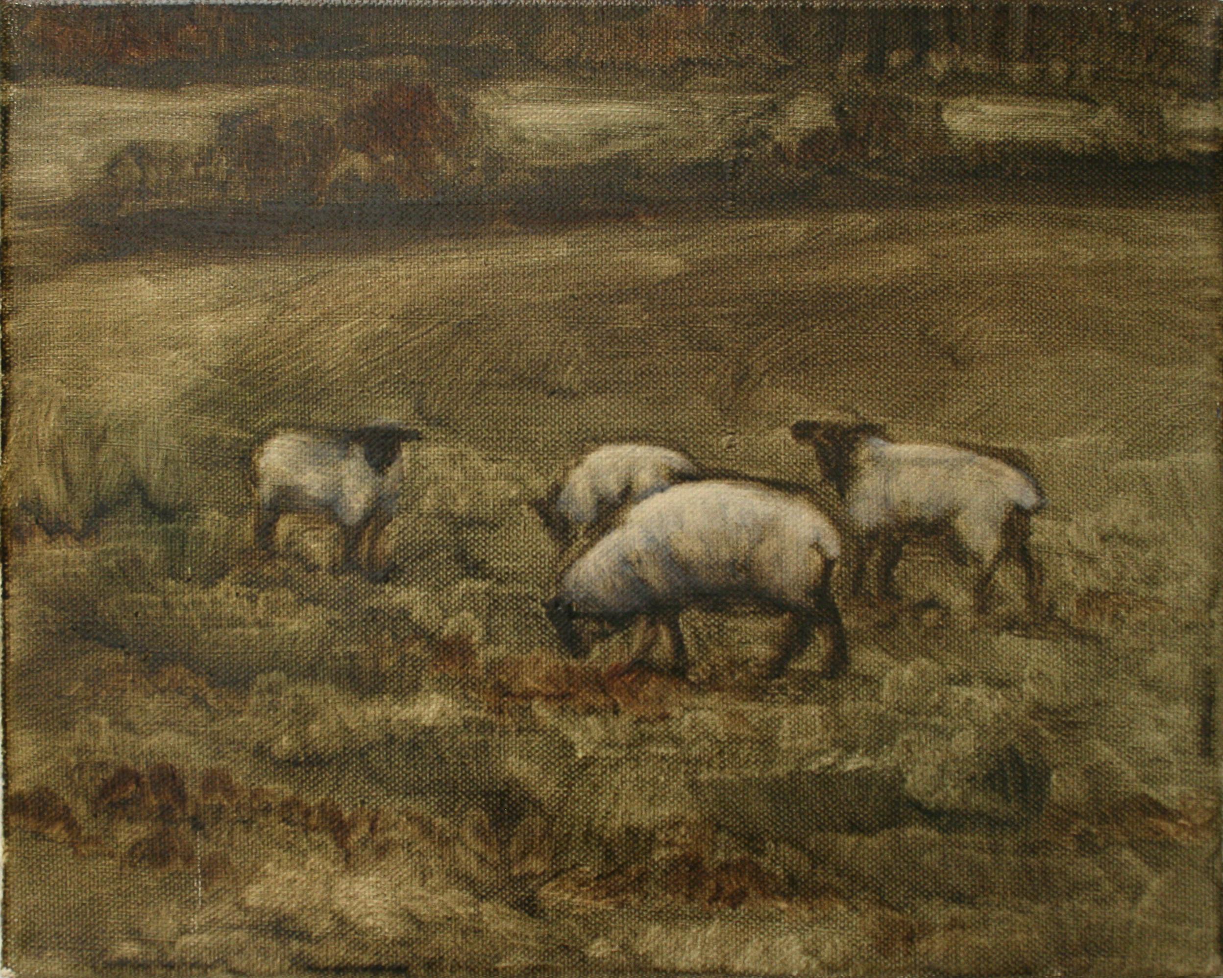 "Sheep Study 6, oil on canvas 30 x 24.5 cm (12"" x 9.5""), 2016"