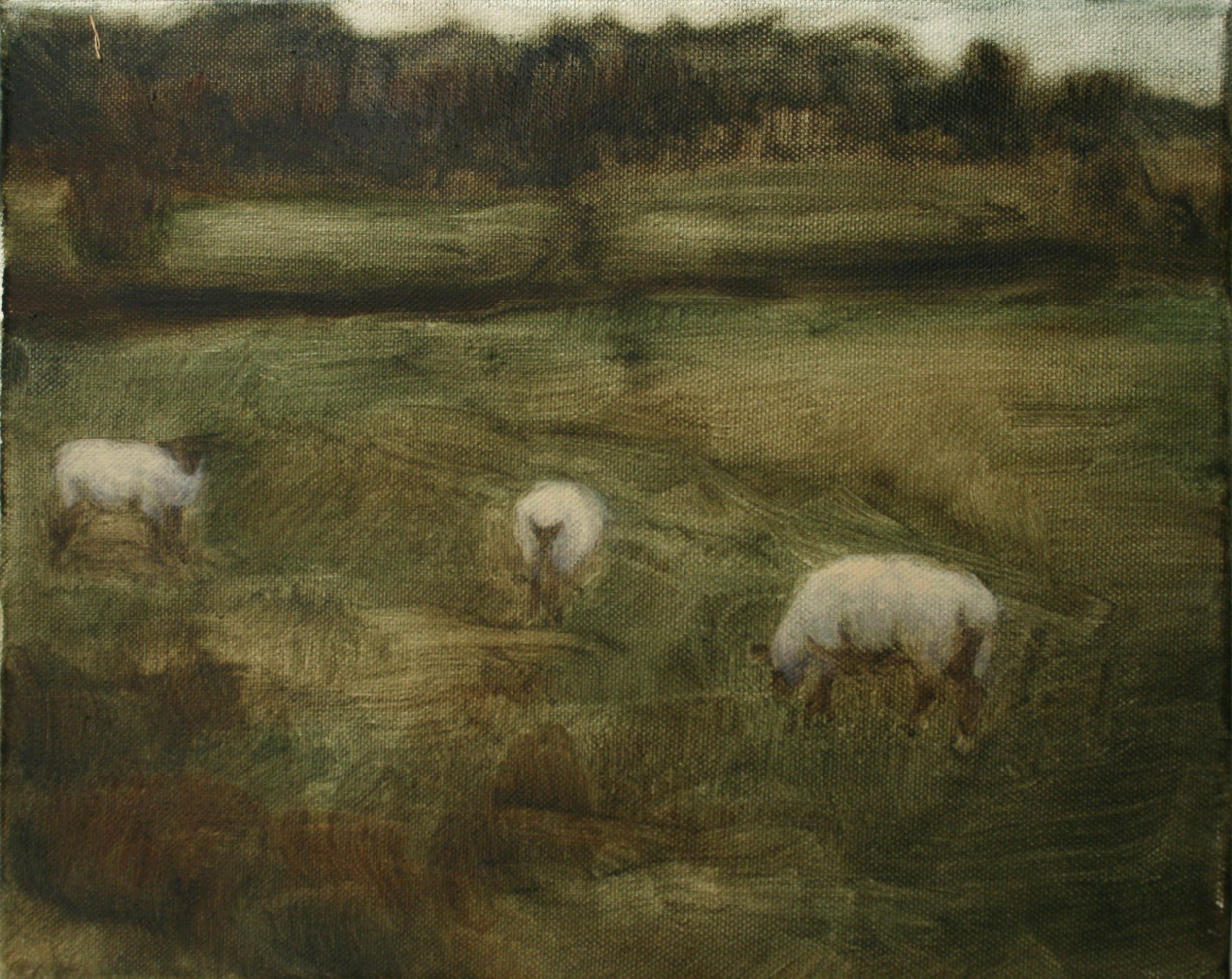 "Sheep Study 7, oil on canvas 30 x 24.5 cm (12"" x 9.5""), 2016"