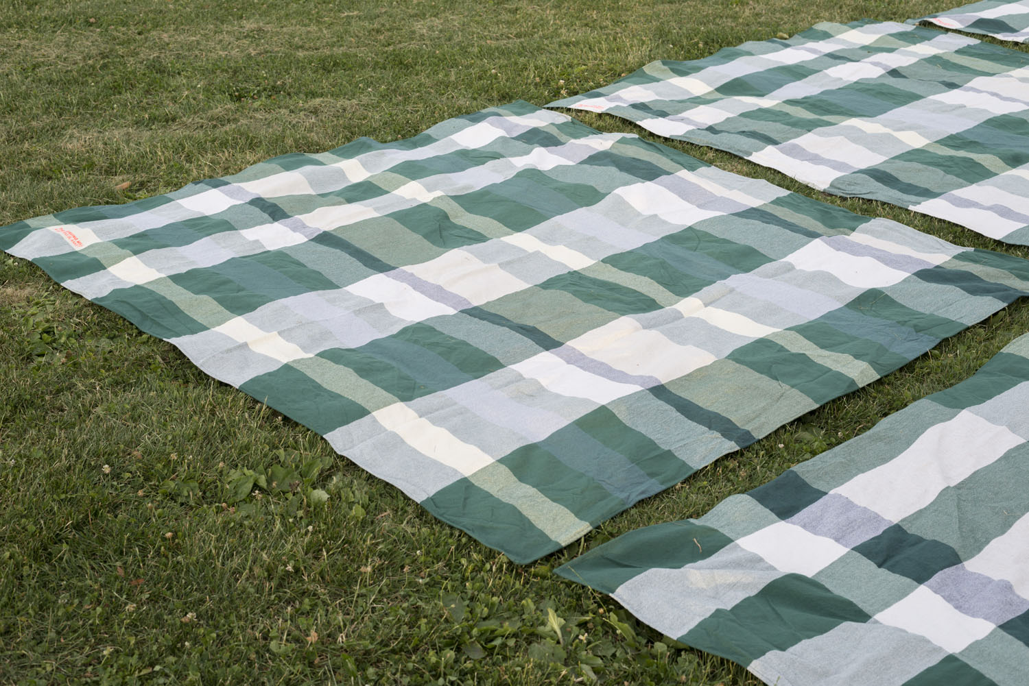 blanket on grass.jpg