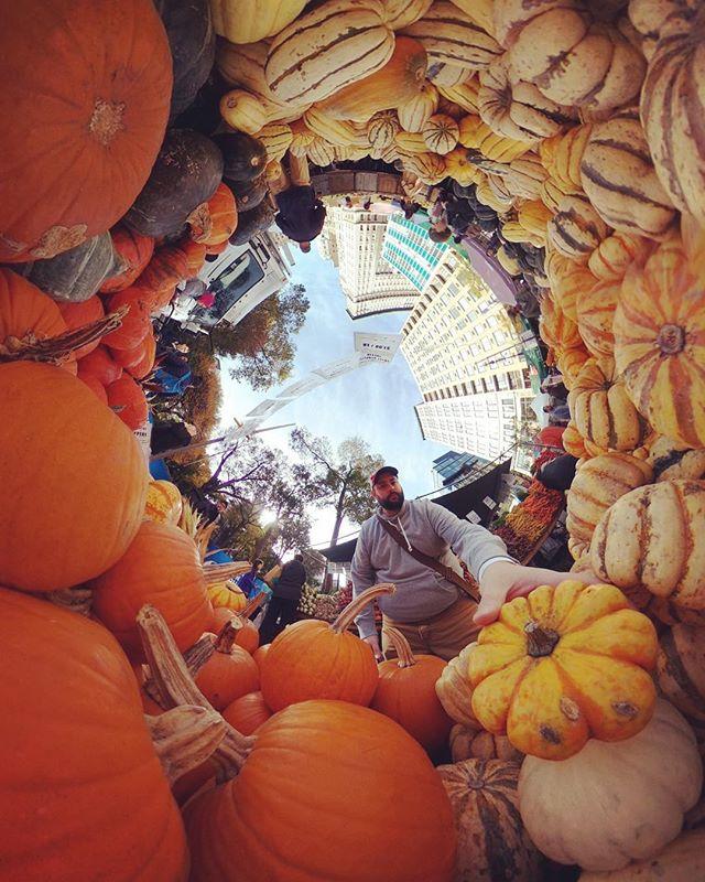 Squeez'n pumpkins . . . #360 #theta360 #nyc #littleplanet #tinyplanet #pumpkin #fall #farmersmarket #unionsquare #thetav  #ricohtheta #ricohtheta360 #autumn #farmlife #citylife #picoftheday