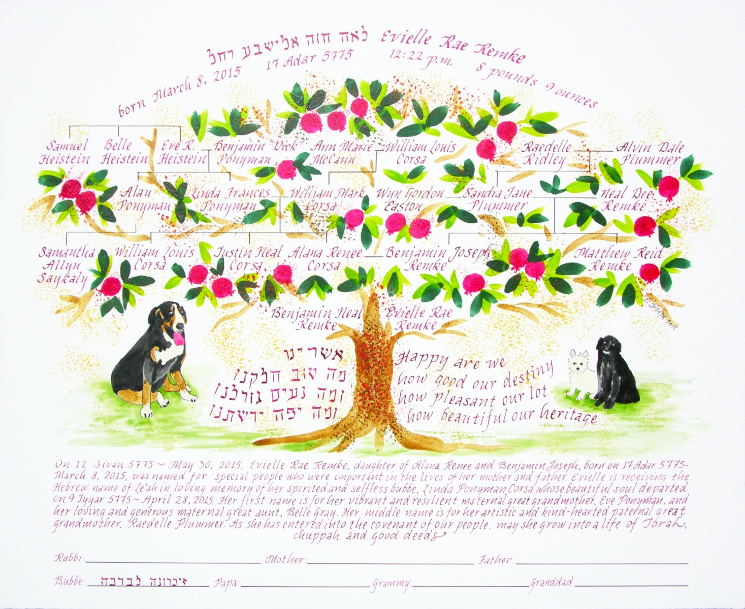 Family Tree/ Baby-Naming Certificate, 2015