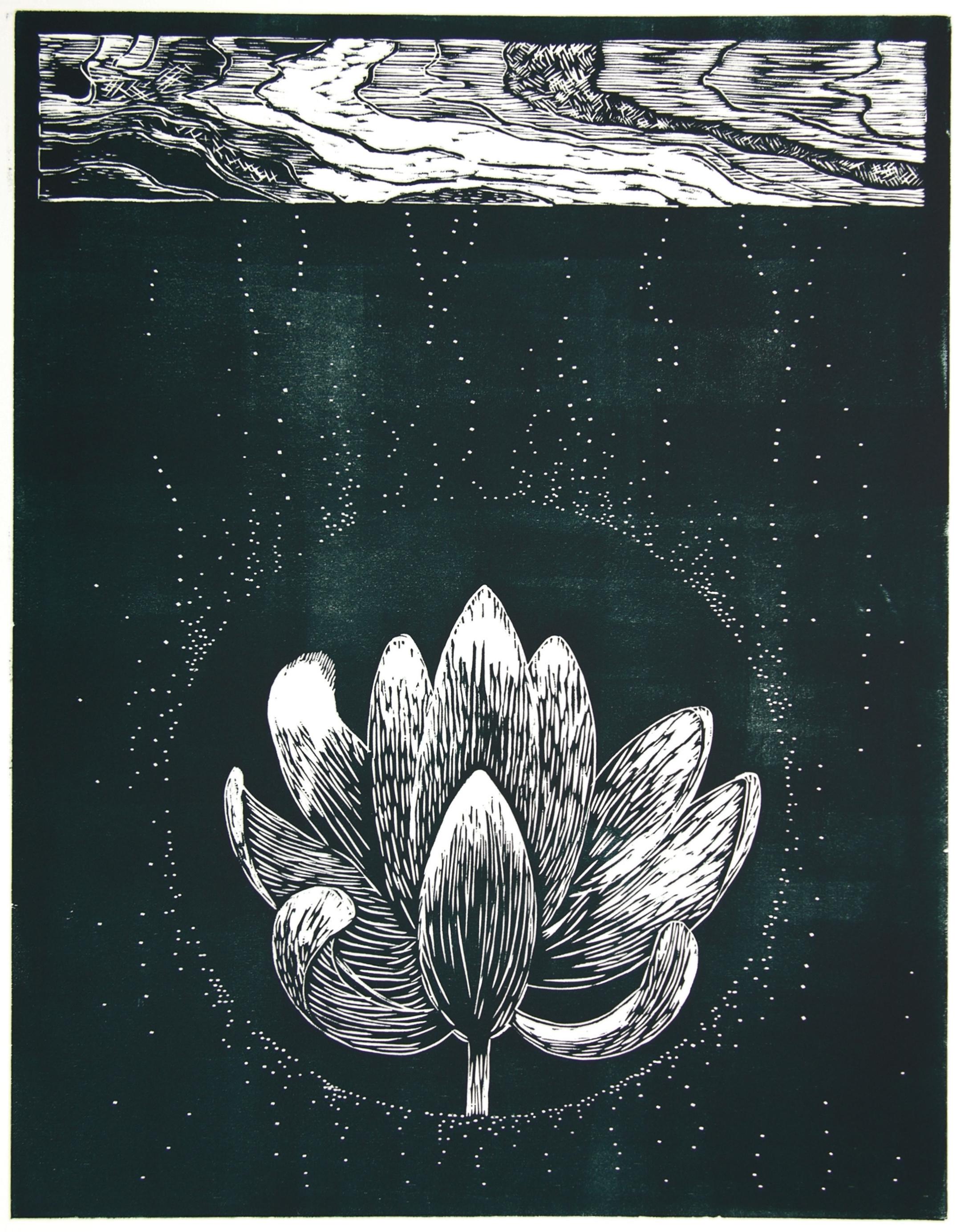 Lotus Bronze