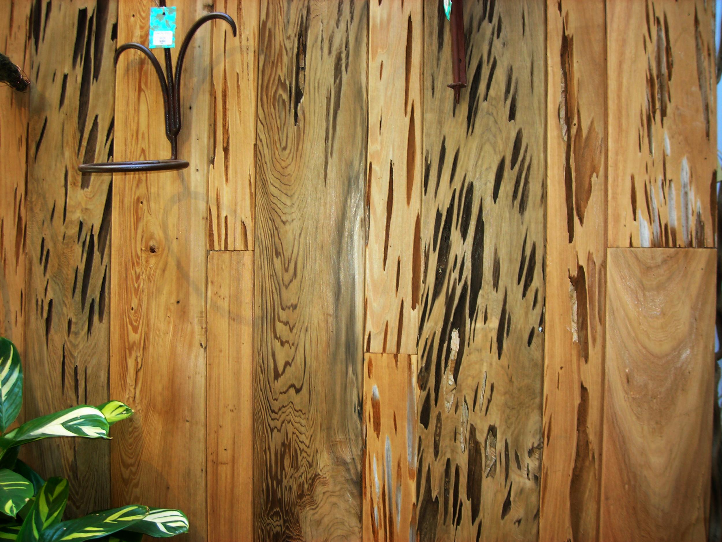 pecky-cypress-2.jpg