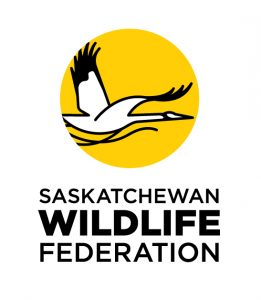 SWF New Logo.jpg