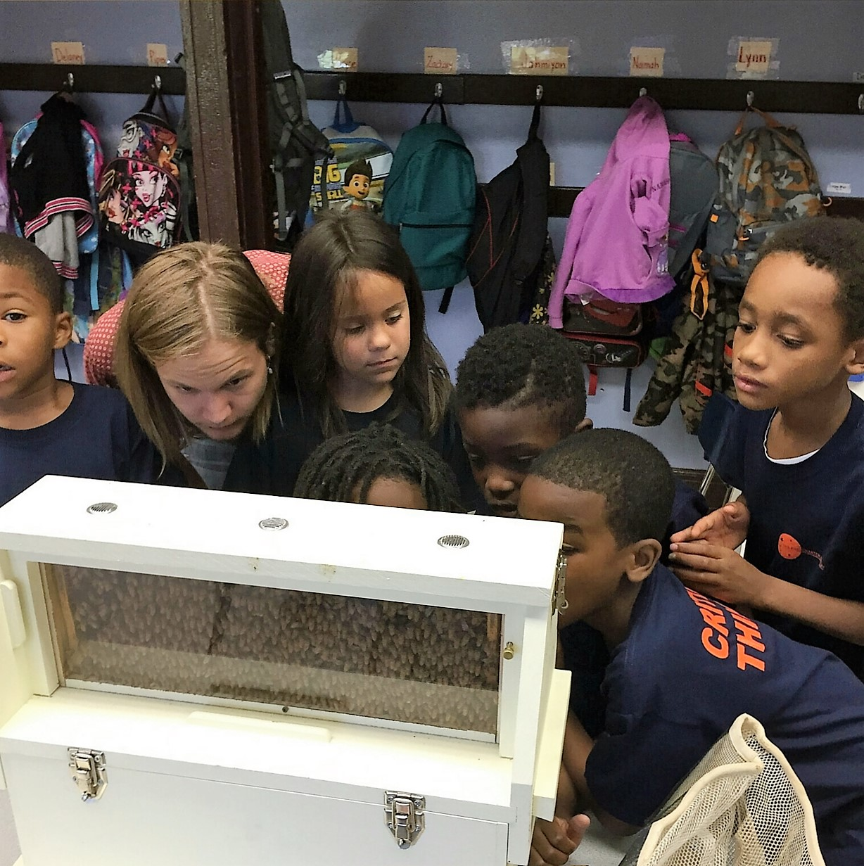 Our traveling observation bee hive makes a visit to Polaris Charter Academy