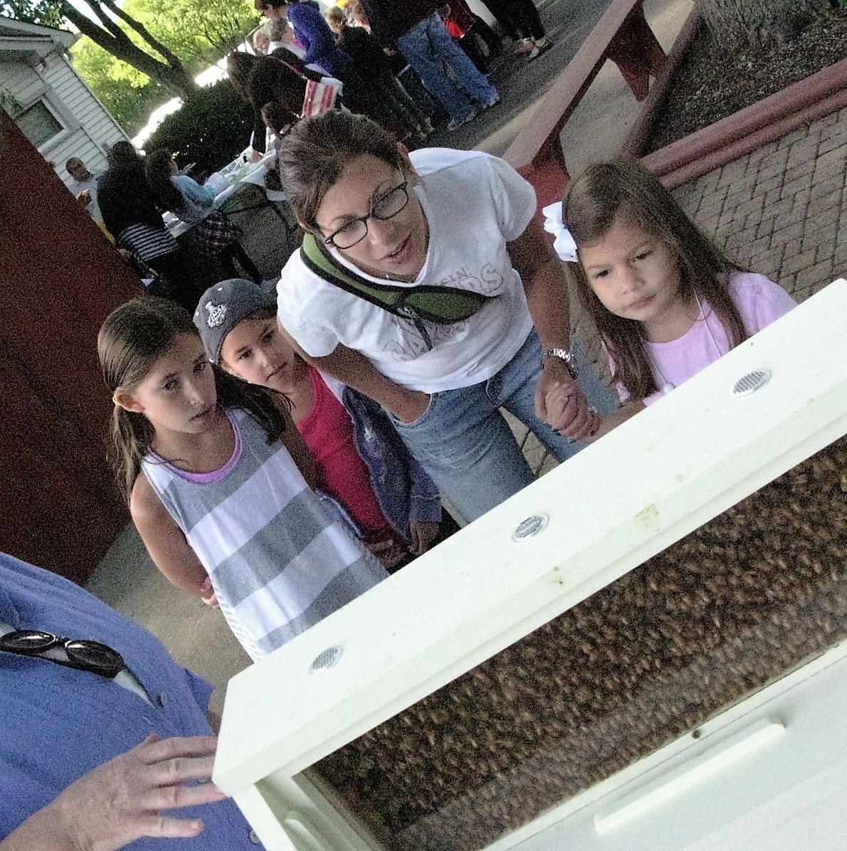 Teaching folks about honeybees at a JCC Chicago family event.
