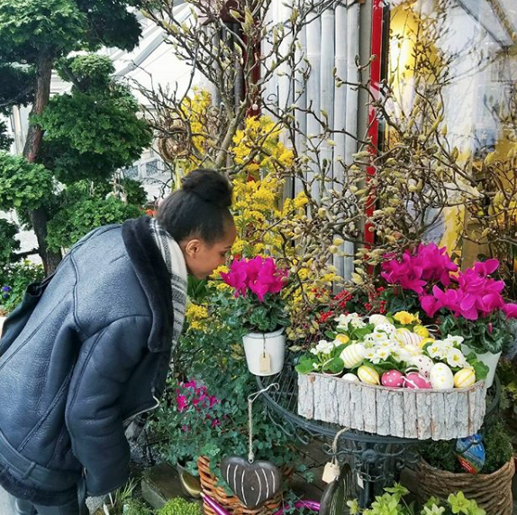 Zurich Flower Shops Tour