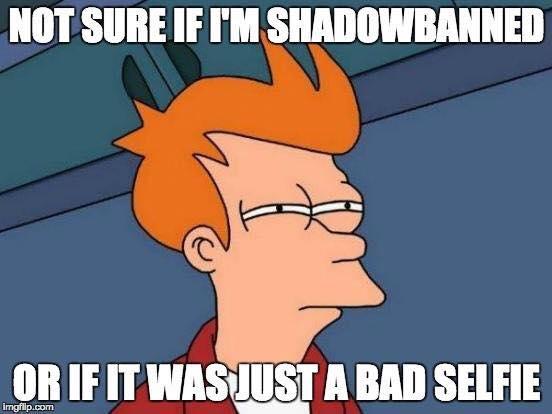Instagram Shadowban Meme.jpg