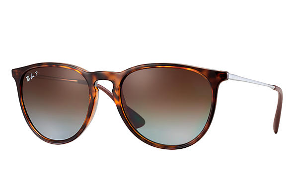 Ray Ban Classic Tortoise Glasses.jpg