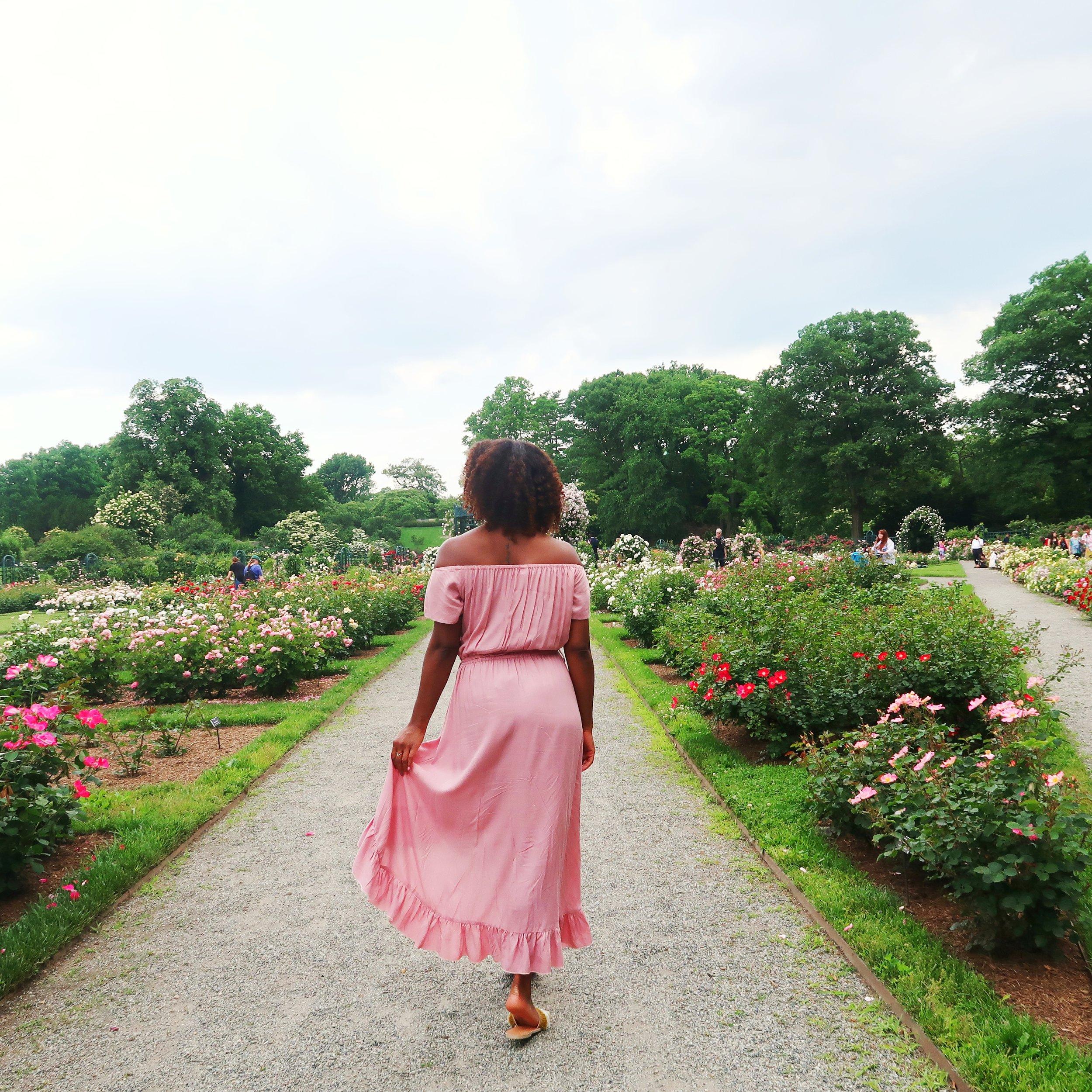 Rose Garden Weekend NYBG