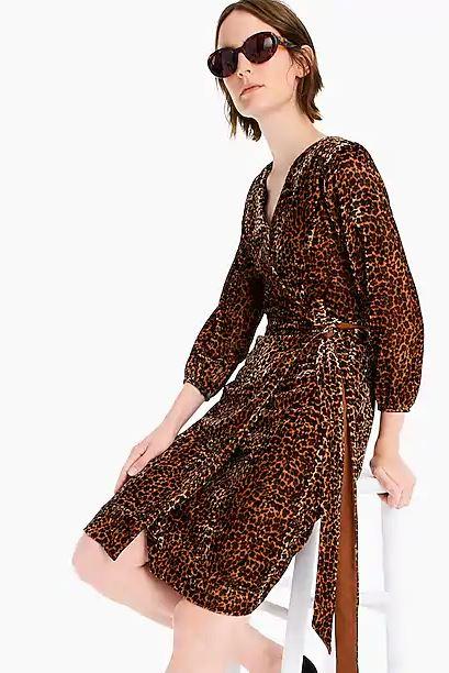 J Crew Leopard Print Wrap Dress.JPG