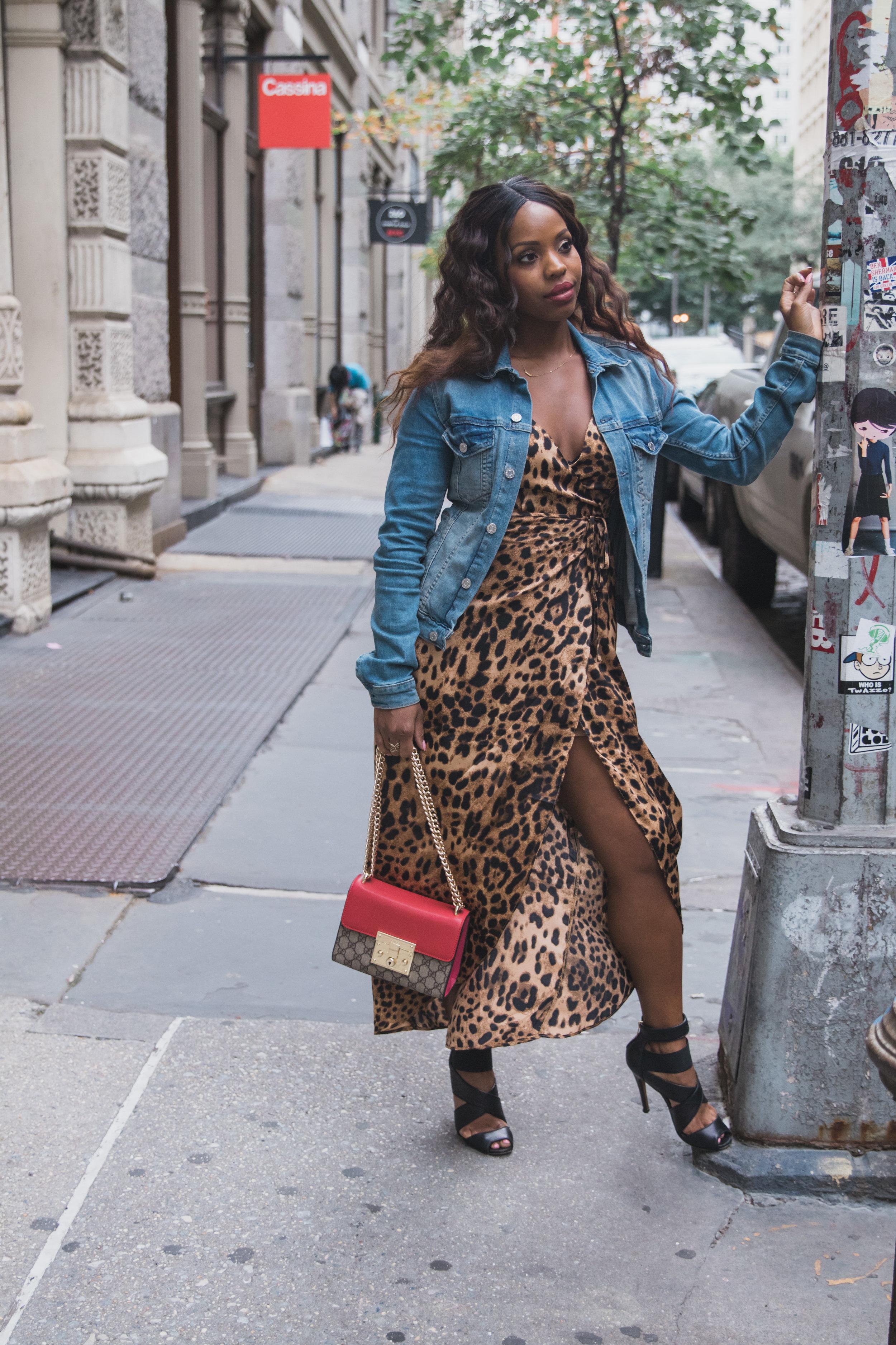 leopard dress denim jacket