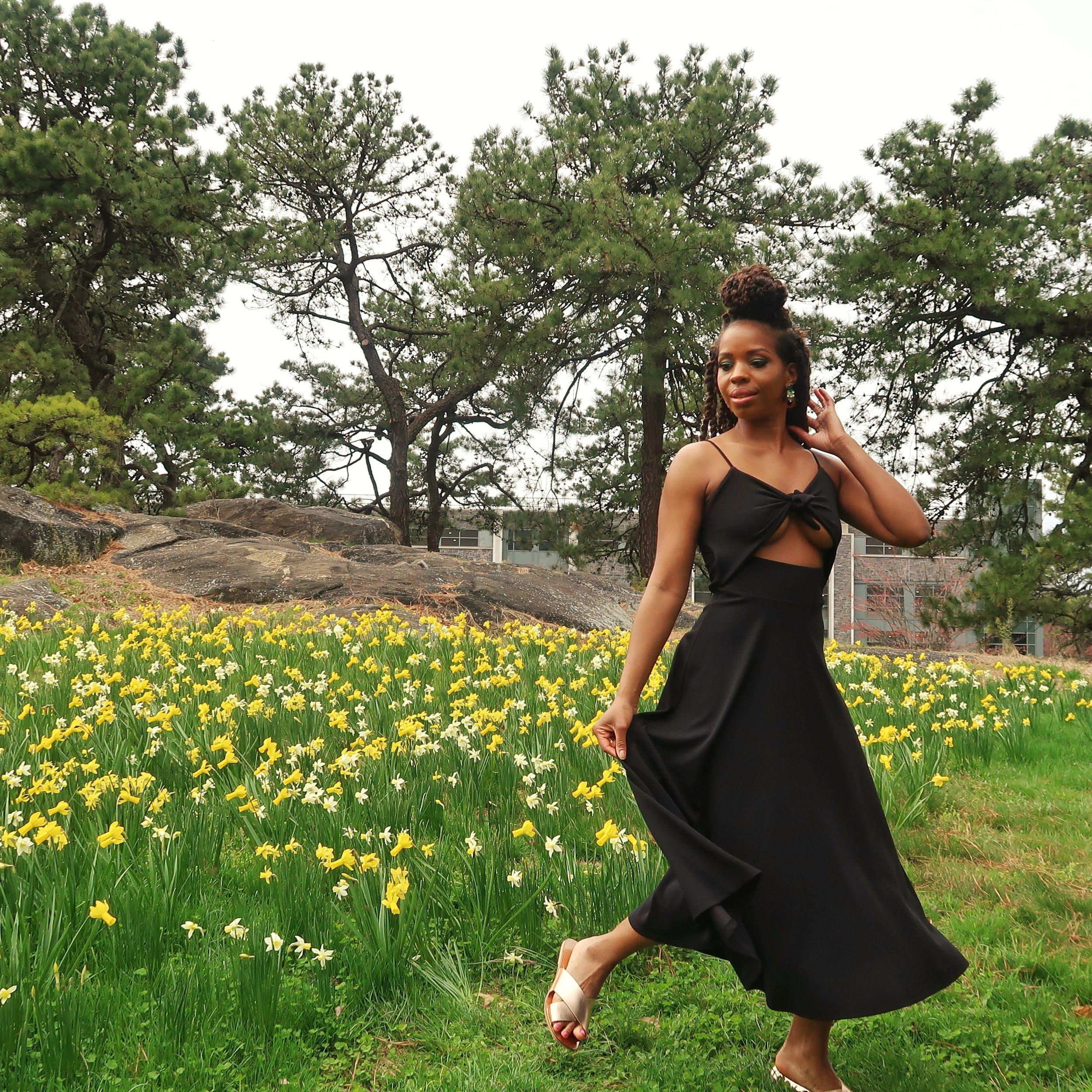 new york botanical garden daffodil hil.jpeg