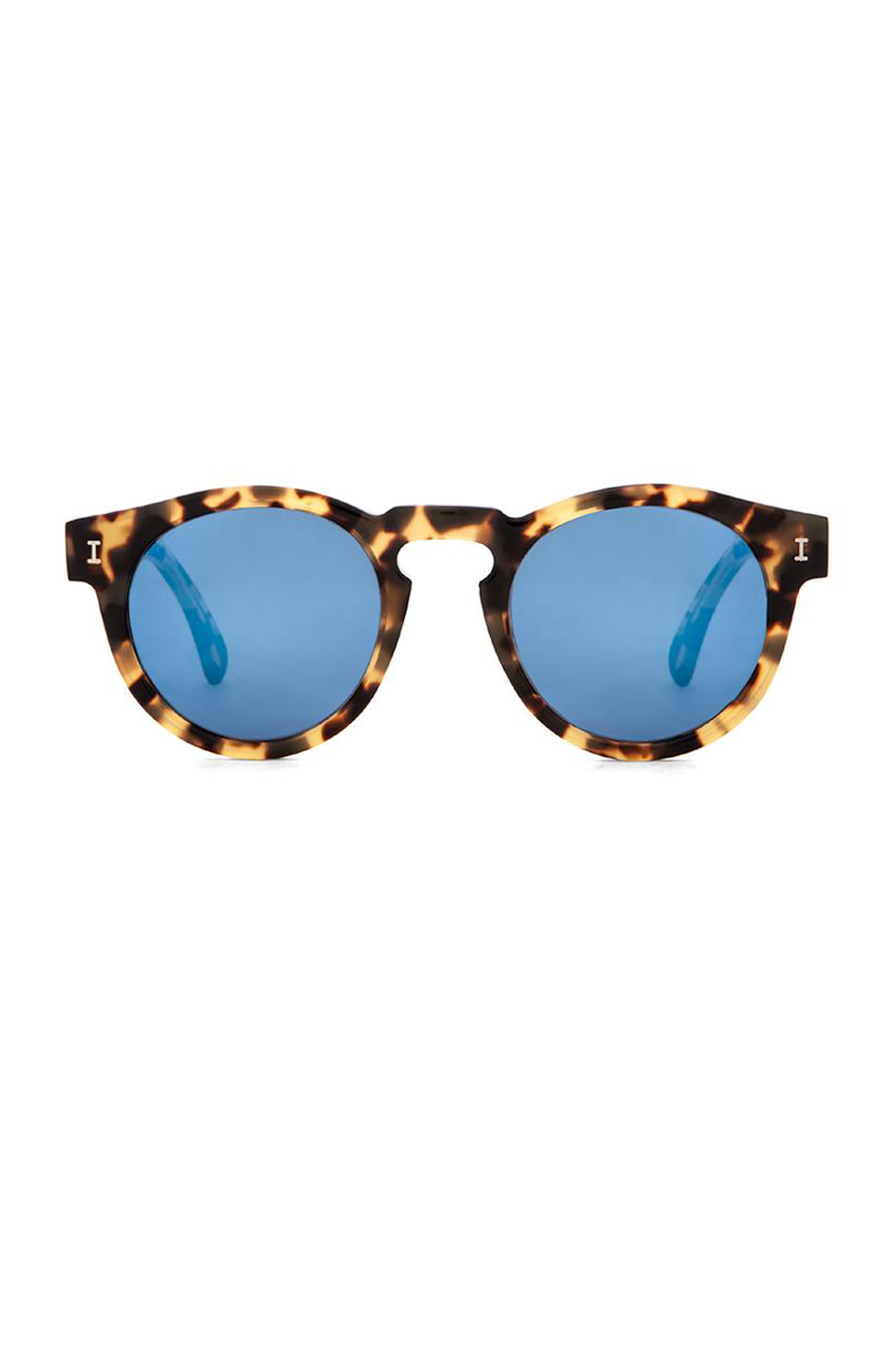 Blue and Tortoise Sunglasses.jpg