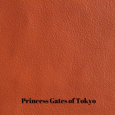 Caprone-Gates-of-Kyoto.jpg